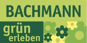 Logo_Bachmann_4c
